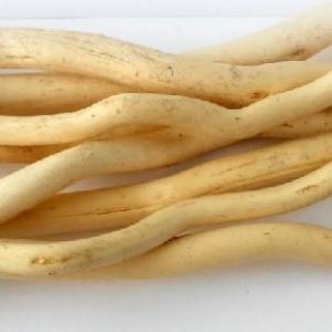 Ствол для топиариев (корилус) желтый