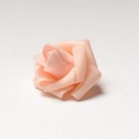 Роза головки, светло-персиковый
