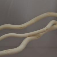 Ствол для топиариев (корилус) белый 1 шт