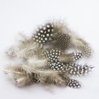 Перья Пестрые (натуральные) 9 см