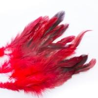 Перья Сорока красные 15 см