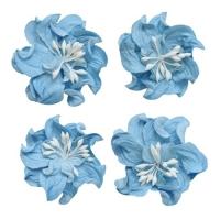 Цветы кудрявой фиалки