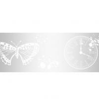 Прозрачный пластиковый скотч с принтом Время бабочек